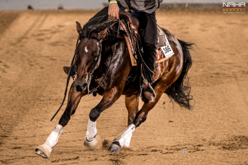 NRHA Germany Breeders Futurity 2021 – The Event for Reining-Youngster