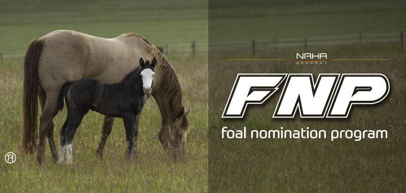Foal nomination until January 10th 2022