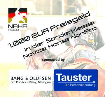 1.000 € Preisgeld in der Sonderklasse Novice Horse NonPro