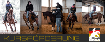 Reining-Kurs mit Levin Ludwig am 07./08.03.2020