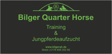Bilger Quarter Horses